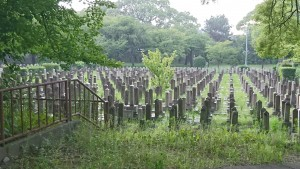 戦後71年目、真田山陸軍墓地にて