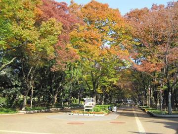秋の大阪、ブラリ散策~♪