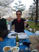 大阪城公園は桜花満開なり~♪