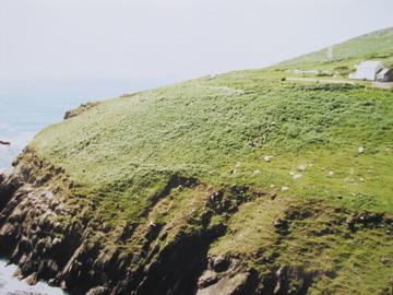 映画の地を訪ねて(1) アイルランド・ディングル半島~『ライアンの娘』